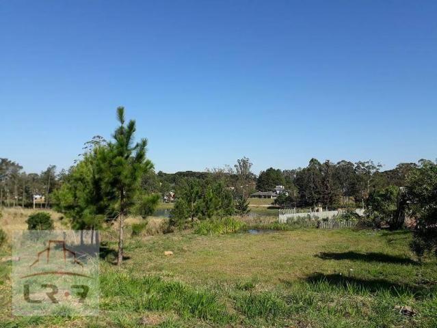 Terreno no Bosque Merhy, Quatro Barras. - Foto 11