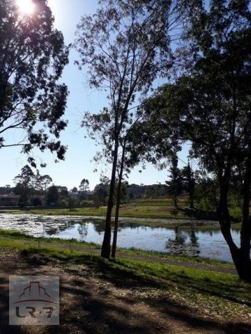 Terreno no Bosque Merhy, Quatro Barras. - Foto 6
