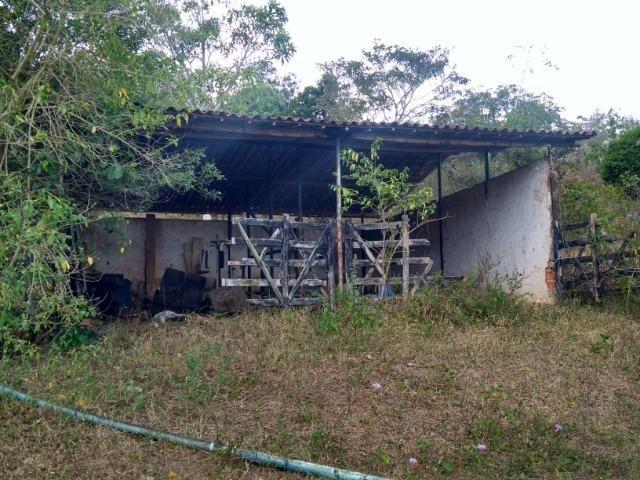Vendo fazenda com 125 tarefas em Pojuca - Ba - Foto 9