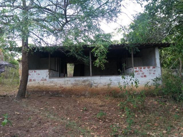 Vendo fazenda com 125 tarefas em Pojuca - Ba - Foto 20