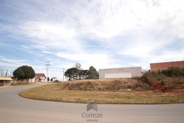 Terreno para locação no Barro Preto - Foto 6
