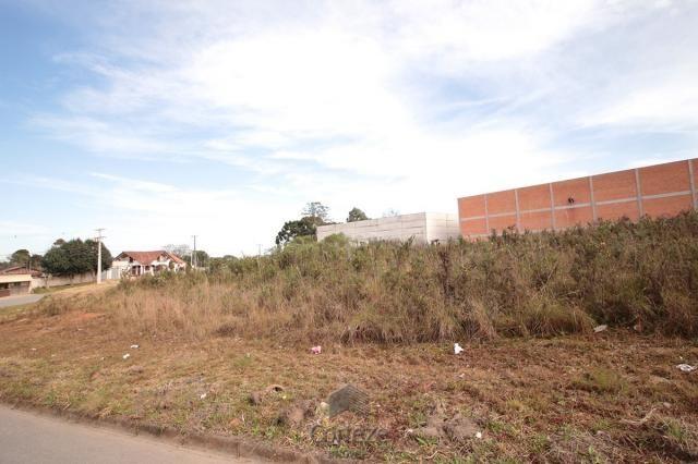 Terreno para locação no Barro Preto - Foto 9