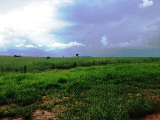 860 Alq. Pega 50% Imóveis Oferta Prazo C/ Entrada Guarani GO - Foto 14