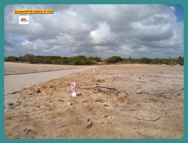 Loteamento Mirante do Iguape- Não perca mais tempo , venha investir-!@!@ - Foto 13