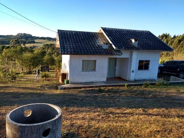 Vendo sítio medindo 13.000 m², na localidade de Rio Branco I - Mafra/SC