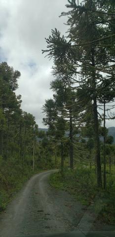 Sitio chácara em Urubici com vista para as montanhas - Foto 2