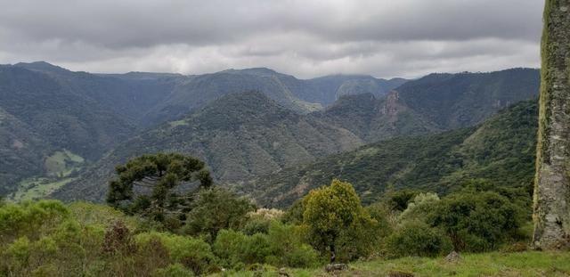 Sitio chácara em Urubici com vista para as montanhas - Foto 6