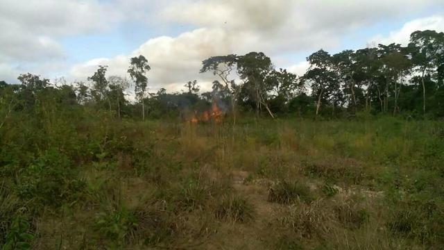 50 hectares valor 45000 região na região de bom Jardim - Foto 5