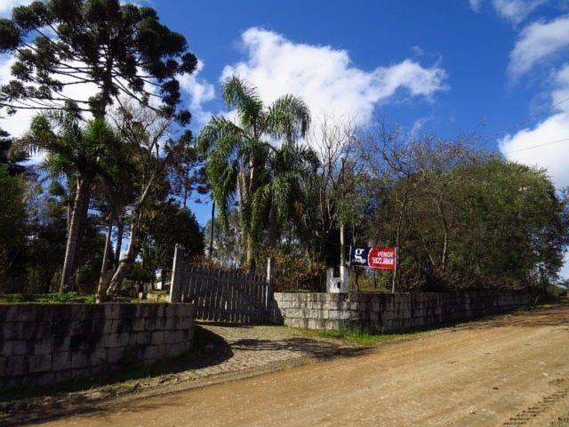 Terreno para alugar em Granja das acacias, Quatro barras cod:13074001 - Foto 3