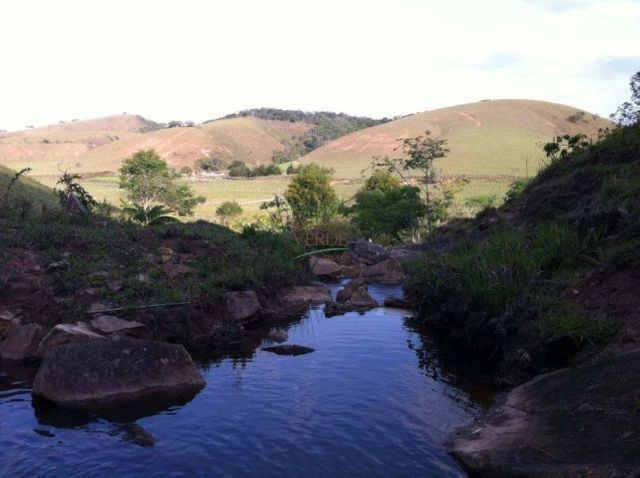 Fazenda excelente para boi - Cód 1505 - Foto 6