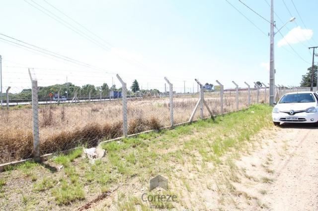 Terreno na Região do São Marcos BR-376 - Foto 2