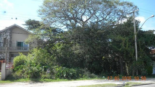 Terreno para alugar em Tres vendas, Pelotas cod:7502 - Foto 4