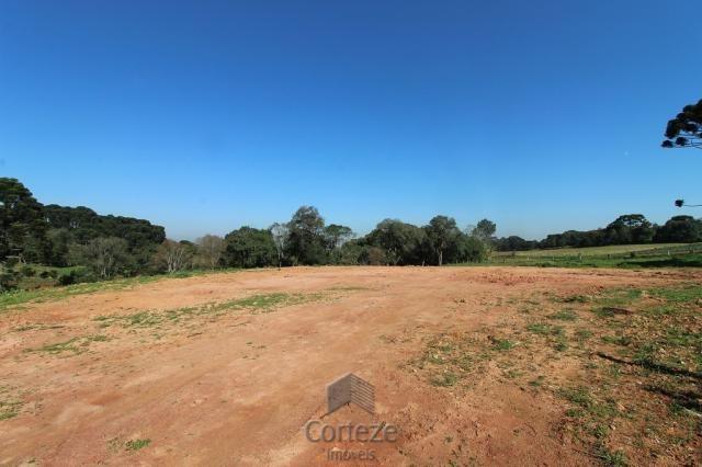 Terreno sem benfeitorias no Barro Preto - Foto 2