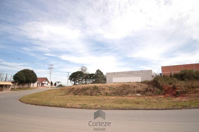 Terreno para locação no Barro Preto - Foto 5