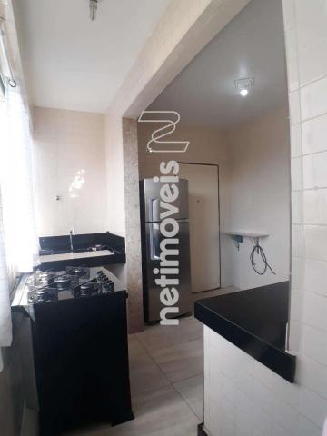 Apartamento à venda com 3 dormitórios em Salgado filho, Belo horizonte cod:818405 - Foto 18