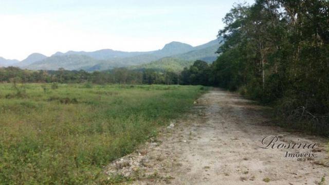 Terreno à venda, medindo 5000 m² por R$ 60.000 - Ponte Alta - Morretes/PR - Foto 6