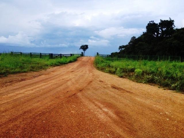 860 Alq. Pega 50% Imóveis Oferta Prazo C/ Entrada Guarani GO