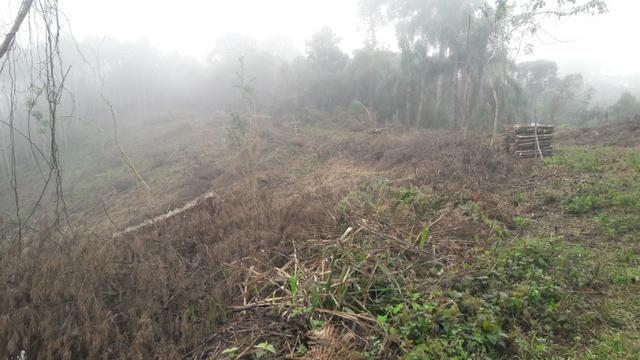 Terreno para fazer arado (mecanizar) - Foto 8