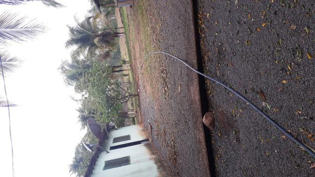 Sítio Rosário Oeste MT 300 Mil reais - Foto 5