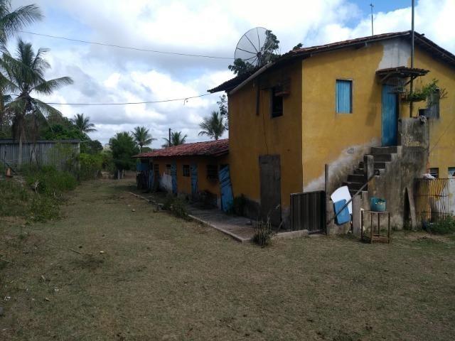 Vendo fazenda com 125 tarefas em Pojuca - Ba - Foto 11