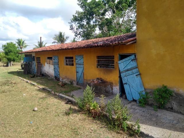 Vendo fazenda com 125 tarefas em Pojuca - Ba - Foto 10
