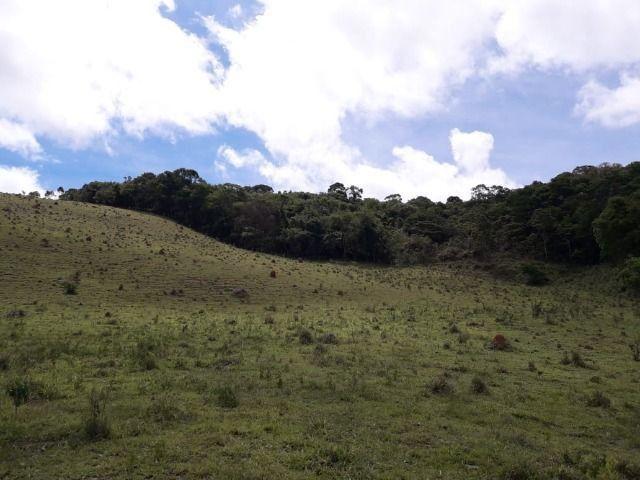 Fazenda no Vale - Cód 1585 - Foto 19