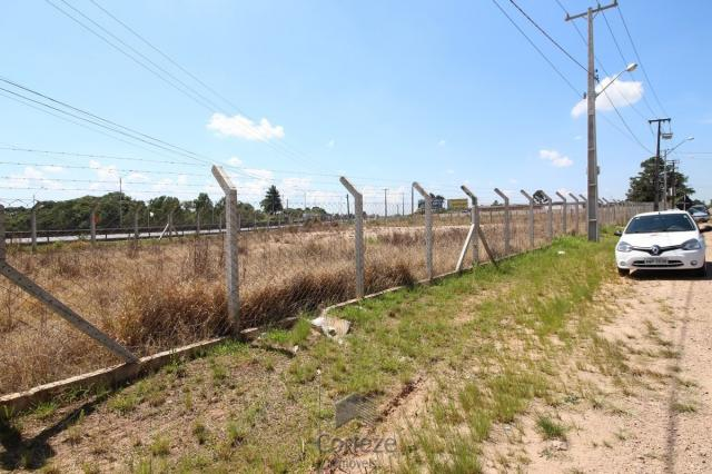 Terreno na Região do São Marcos BR-376 - Foto 3