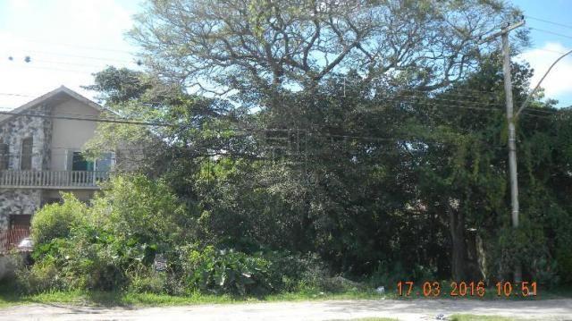Terreno para alugar em Tres vendas, Pelotas cod:7502 - Foto 2