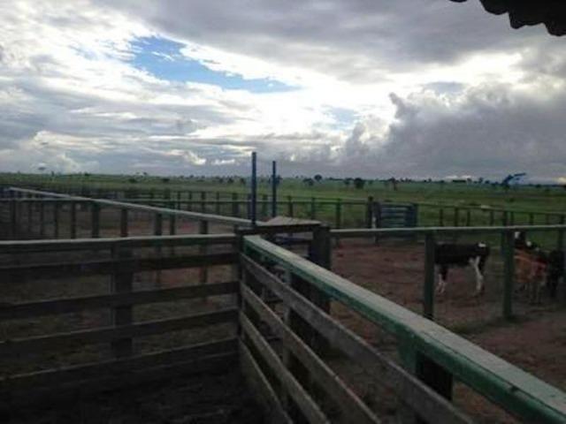 860 Alq. Pega 50% Imóveis Oferta Prazo C/ Entrada Guarani GO - Foto 2