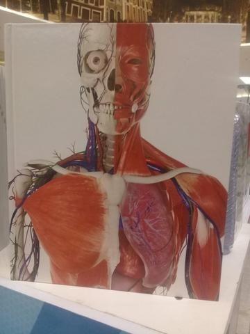 Livro do corpo humano enfermagem