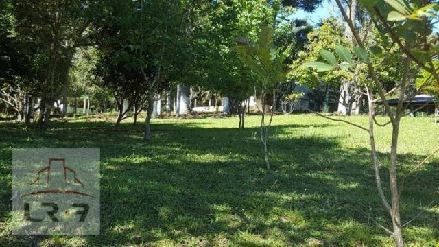 Chácara residencial à venda, Faxina, São José dos Pinhais. - Foto 15