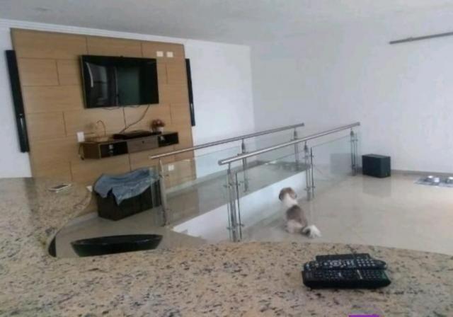 Apartamento à venda com 3 dormitórios em Santa maria, São caetano do sul cod:10994 - Foto 14