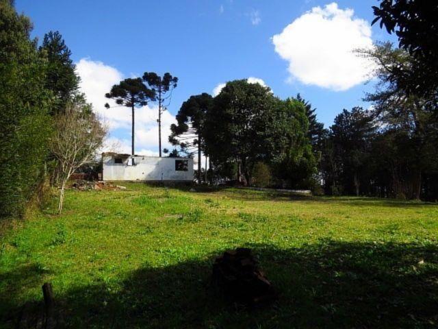 Terreno para alugar em Granja das acacias, Quatro barras cod:13074001 - Foto 5