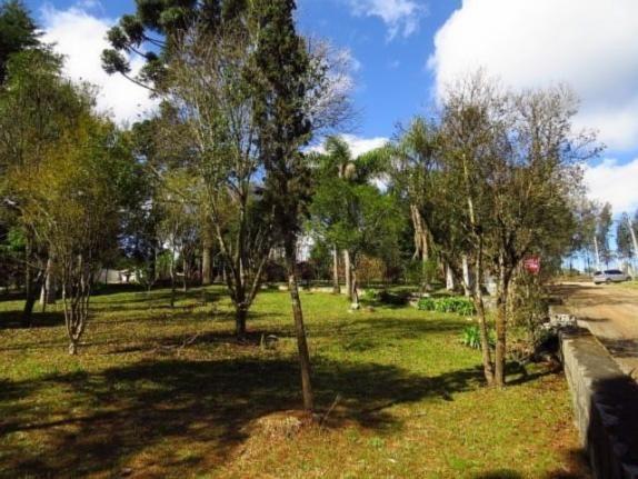 Terreno para alugar em Granja das acacias, Quatro barras cod:13074001 - Foto 10