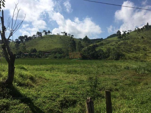 Fazenda boa e barata para boi - Cód 1713 - Foto 5