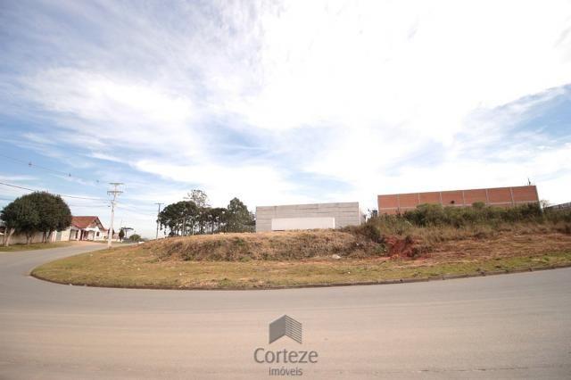 Terreno para locação no Barro Preto - Foto 3