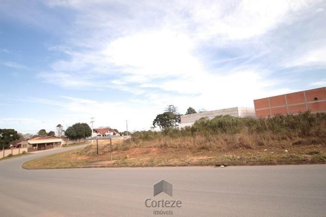 Terreno para locação no Barro Preto - Foto 7