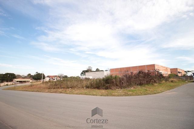 Terreno para locação no Barro Preto - Foto 10