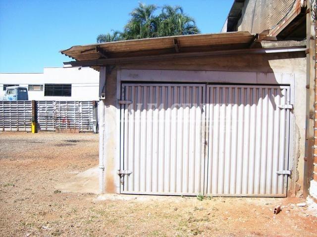 Terreno para alugar, 981 m² por R$ 2.500,00/mês - Capuava - Goiânia/GO - Foto 5