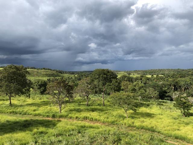 Excelente Fazenda para criação de gado - Foto 7