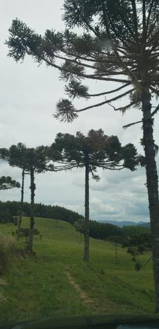 Terreno em Bom Retiro/área rural em Bom Retiro