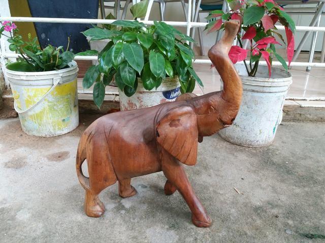 Elefantes decorativos de madeiras da África. wt(983779877)