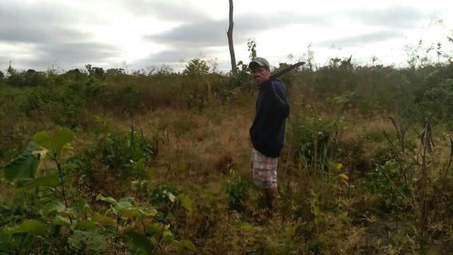 50 hectares valor 45000 região na região de bom Jardim