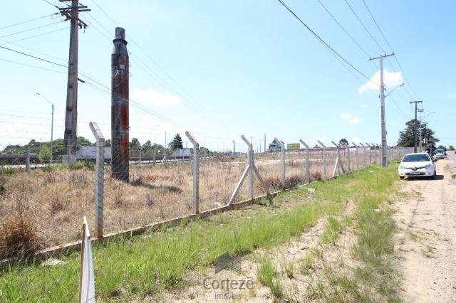 Terreno na Região do São Marcos BR-376 - Foto 4
