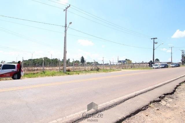 Terreno na Região do São Marcos BR-376 - Foto 7
