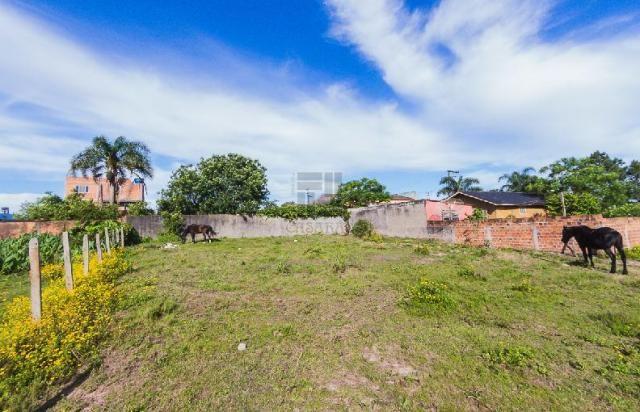 Terreno para alugar em Fragata, Pelotas cod:10284 - Foto 3