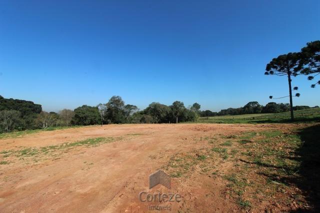 Terreno sem benfeitorias no Barro Preto - Foto 3