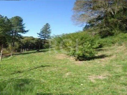 Sítio à venda em Lomba do pinheiro, Porto alegre cod:MI270383 - Foto 3