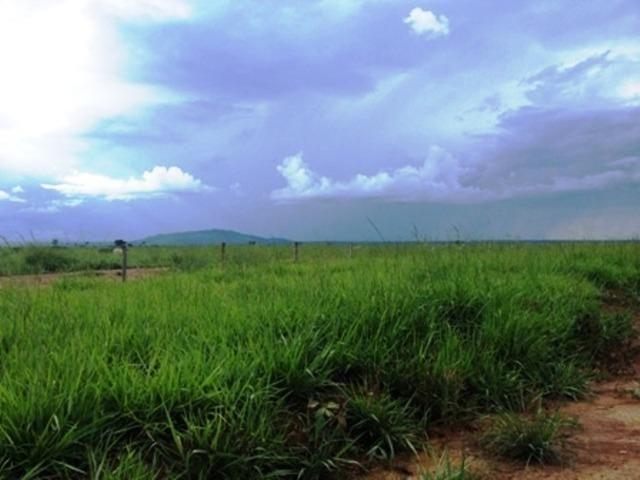 860 Alq. Pega 50% Imóveis Oferta Prazo C/ Entrada Guarani GO - Foto 6