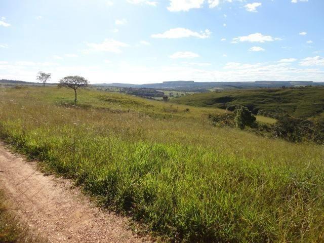 Fazenda Escriturada 90 Hect as Margens do Rio Areia Localizado Santo Antônio do Descoberto - Foto 2